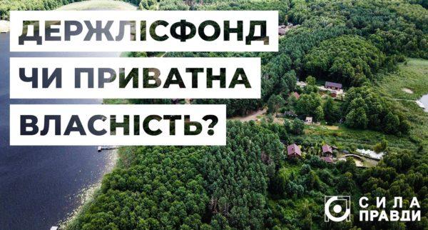 Керівництво Турійського лісгоспу не допустило екологів до перевірки в заказнику